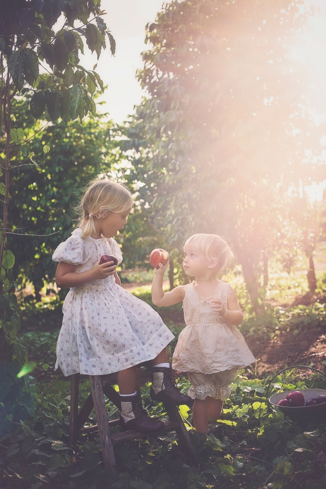 vintage family photography in an apple orchard