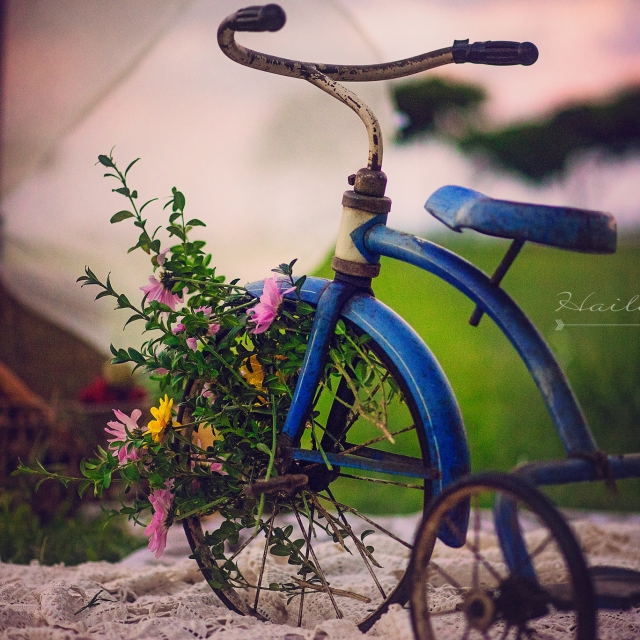 vintage tricyle