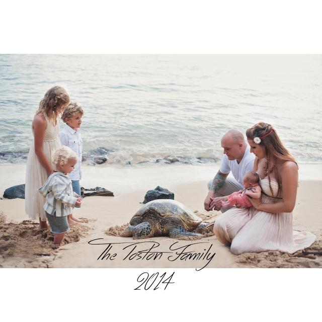 Haleiwa beach sea turtle